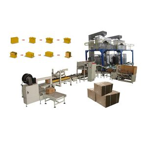 Sistema de cartonización de bolsas